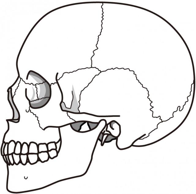 当院の顎関節症のアプローチ